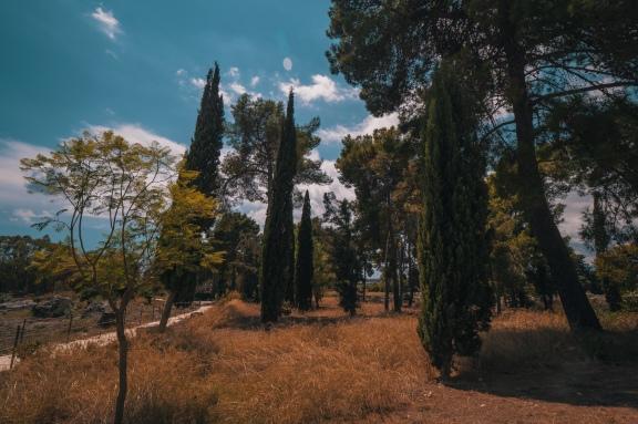 Italia_2018_WII_95