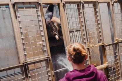 Tierpflegerschule_2019_79